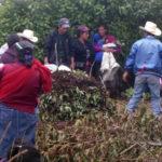 Progetto Orto comunitario Hermana Tierra Onlus in Guatemala